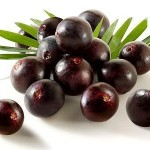 acai berry antioxidant superfood