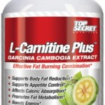 l-carnitine supplements